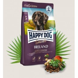 HAPPY DOG - IRLAND sensible...